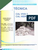 Ficha Tecnica Cal Viva e Hidratada[1]