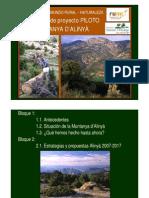 Proyecto Piloto Alinya