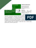 Síndrome Podotroclear