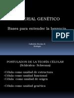 Genética 2°