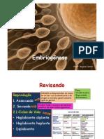 Aula_3_EM_3°_ano_-_Embriogenese
