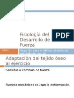 Fisiología del Desarrollo de la Fuerza