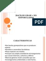 Bacilos Gram + No Esporulados