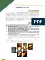 Krakatau Steel - Company Case Study