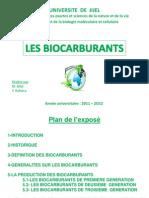 Les Bio Car Bur Ants