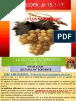 La Vid y Los Sarmientos-exposicion-power Point(2) MARTINEZ