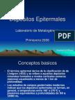 Clase_Epitermal
