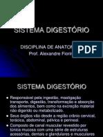 sistema-digestrio