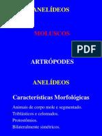 aneldeosmoluscoseartrpodospowerpoint-091130123443-phpapp01