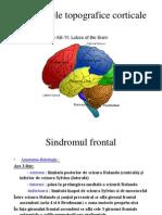 sdr topografice corticale