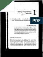 Direitos Fundamentais e Processo - Ingo Wolfgang Sarlet