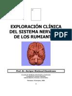 Exploracion Clinica Del Sn de Los Rumiantes