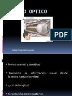 NERVIO OPTICO1