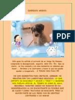 Recomendaciones para Animales Perdidos