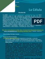 Presentación 01 - La Célula