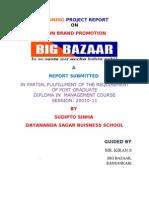 ownbrandpromotionbysudipto-110108104815-phpapp02