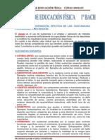 APUNTES EDUCACIÓN FÍSICA1º BACHILLERATO