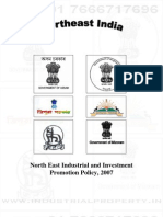 Neiipp Industrial Policy 2007