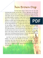 The Thin Brown Dog