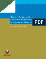 Marco Curricular Ed Basica y Media Actualizacion 2009