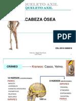craneoa-magalys-090527102407-phpapp01