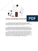 Anatomy and Physiology of the KemPtah Formula