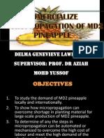 MD2 Presentation