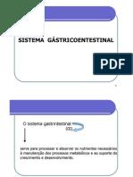 Sistema Gastrointestinal Rv