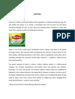 Lipton Marketing Plan