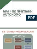 adrenalinaynoradrenalina-111208191113-phpapp02