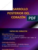 DESARROLLO POSTERIOR DEL CORAZÓN