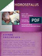 Hidrocefalus Ppt