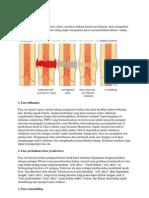 Histo Jar Tulang