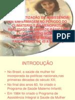 A SISTEMATIZAÇÃO DA ASSISTÊNCIA DE ENFERMAGEM NO PERIODO