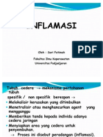 inflamasi
