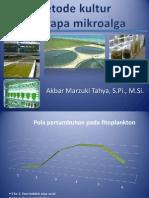 2. kultur fitoplankton
