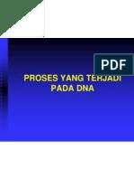 Proses Di DNA