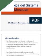 3 Sistema Muscular