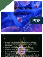 Membrana Celulara
