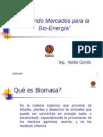 CreandoMercadosBioenergía