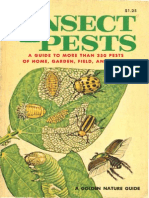 Insect Pests