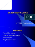 BABESIOSIS EQUINA