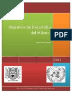 Objetivos de Desarrollo Del Milenio Fin