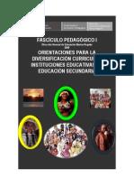 ORIENTACIONES PARA LA DIVERSIFICACIÓN CURRICULAR EN EDUCACIÓN SECUNDARIA