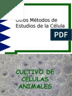 Otros Métodos de Estudios de la Célula