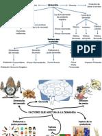 Mapa Conceptual y Mental de Demanda
