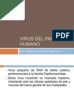 2. Virus Del Papiloma Humano