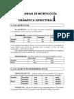 Morfologia  Gramatica Estructural