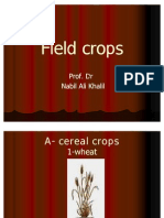 Copy of Field Crops