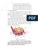 Anatomia AP Feminin SOPC